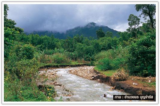 ธารน้ำที่เห็นเป็นสายน้ำจากนำตกปริตุ๊โกร ถัดไปเป็นทิวเขาดอยมะม่วง
