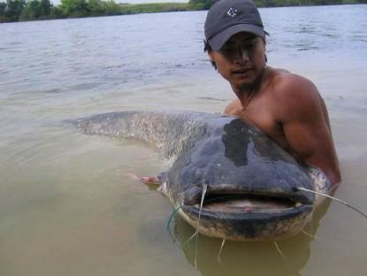 ปลาโตนี้มอบให้บ่าวจัยครับ